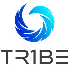 logo tr1be.eklektike